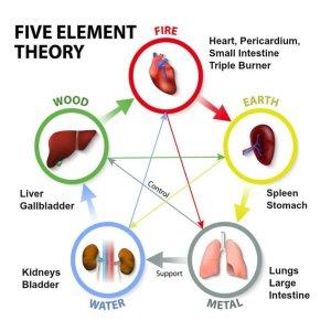 5 elements TCM